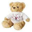 Personalised Spotty Santa Message Bear